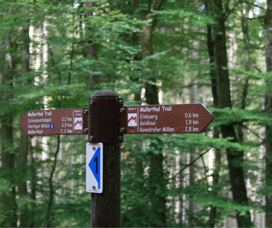 Wandelen in het Mullerthal