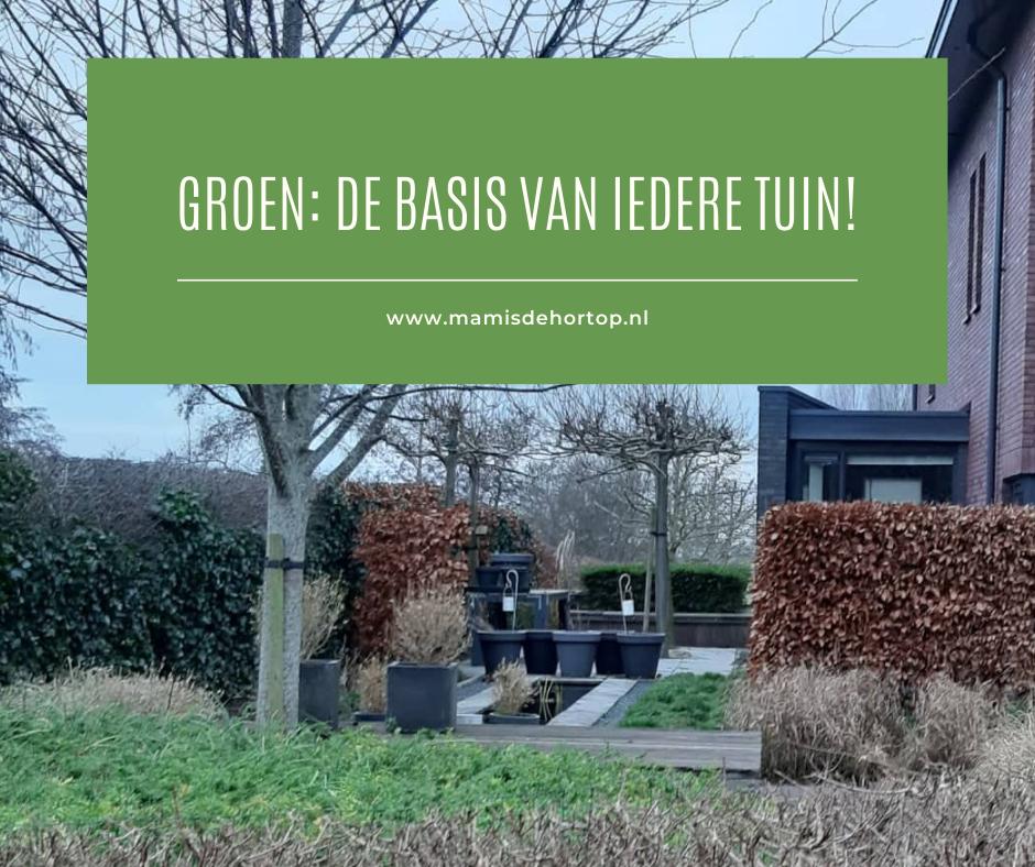 Groen: de basis van iedere tuin!